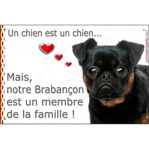 Brabançon, Plaque Portail un chien est un chien, membre de la famille, pancarte, affiche panneau attention au chien