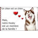 Plaque 20 cm LOVE Membre de la Famille, Husky Marron