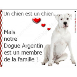 "Dogue Argentin Assis, plaque ""Membre de la Famille"" 16 cm LOVE"