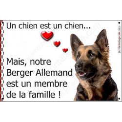 """Berger Allemand, plaque """"Membre de la Famille"""" 24 cm LOVE"""