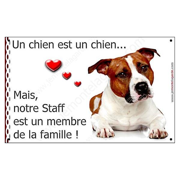 American Staff Fauve Couché, Plaque Portail un chien est un chien, membre de la famille, pancarte, affiche panneau