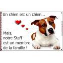 Plaque 20 cm LOVE Membre de la Famille, American Staff Fauve