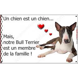 Plaque 20 cm LOVE Membre de la Famille, Bull Terrrier Bringé