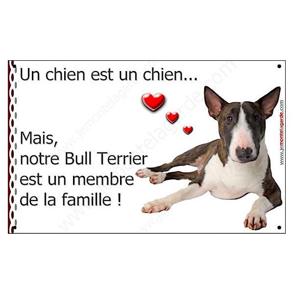 Bull Terrrier Bringé Couché, Plaque Portail un chien est un chien, membre de la famille, pancarte, affiche panneau