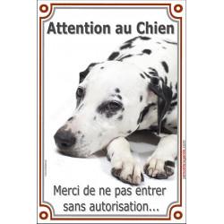 """Dalmatien Couché, plaque verticale """"Attention au Chien"""" 24 cm LUXE B"""