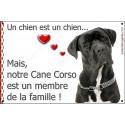 Plaque 2 Tailles LOVE Membre de la Famille, Cane Corso Noir Bringé