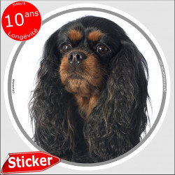 "Cavalier noir et feu, sticker autocollant rond ""photo"" 15 cm"