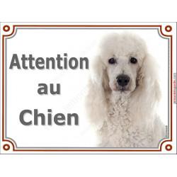 Plaque portail 2 tailles Attention au Chien, Caniche blanc Tête pancarte panneau