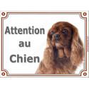 """Cavalier Rubis, plaque """"Attention au Chien"""" 2 tailles C"""