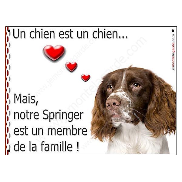Springer Tête, Plaque Portail un chien est un chien, membre de la famille, pancarte, affiche panneau