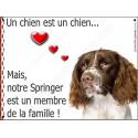 Plaque 16 cm LOVE Membre de la Famille, Springer
