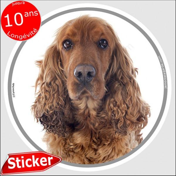 """Cocker Anglais Spaniel Golden, sticker autocollant rond """"photo"""" 15 cm intérieur/Extérieur adhésif chien roux marron résistant in"""