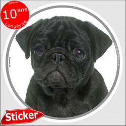 """Carlin noir, sticker autocollant rond """"photo"""" 15 cm intérieur/Extérieur"""