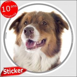 """Berger Australien tricolore rouge, sticker autocollant rond """"photo"""" 15 cm intérieur/Extérieur, adhésif chien Aussie résistant in"""