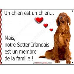 Setter Irlandais Assis, Plaque Portail un chien est un chien, membre de la famille, pancarte, affiche panneau