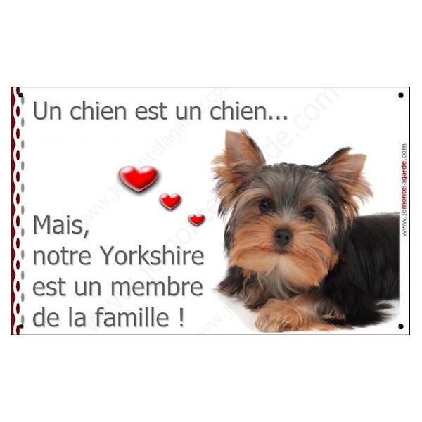 Yorkshire Couché, Plaque Portail un chien est un chien, membre de la famille, pancarte, affiche panneau