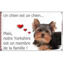 """Yorkshire Couché, plaque """"Membre de la Famille""""  20 cm LOV"""