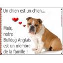 Plaque 16 cm LOVE Membre de la Famille, Bulldog Anglais