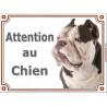 "American Bully bicolore Tête, plaque portail ""Attention au Chien"" 2 tailles LUX A"