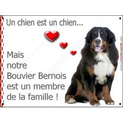 Bouvier Bernois Assis, Plaque Portail un chien est un chien, membre de la famille, pancarte, affiche panneau