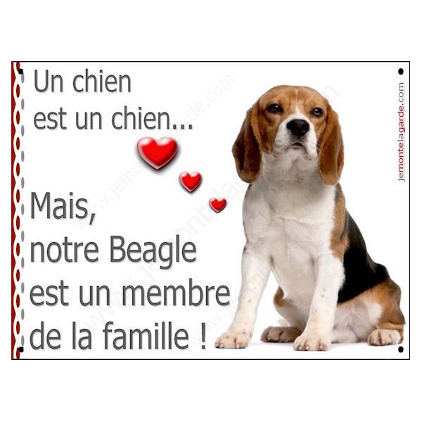 Beagle Assis, Plaque Portail un chien est un chien, membre de la famille, pancarte, affiche panneau