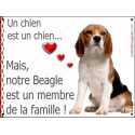 Plaque 16 cm LOVE Membre de la Famille, Beagle Assis