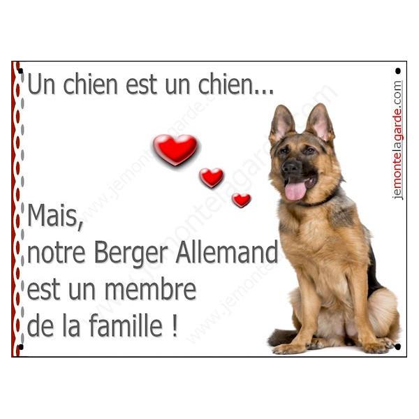 """Berger Allemand Poils courts Assis, Plaque """"un chien est un membre de la famille"""" pancarte photo affiche panneau idée cadeau"""