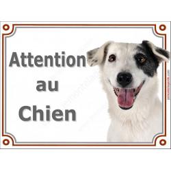 "Jack Russell blanc cocard Tête, plaque portail ""Attention au Chien"" 2 tailles LUX A"