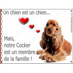 """Cocker Golden couché, plaque """"Membre de la Famille"""" 2 Tailles LOVE A"""