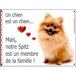 Plaques 2 Tailles LOVE Membre de la Famille, Spitz Roux Assis