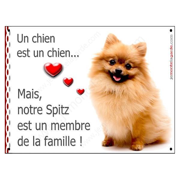 Spitz Roux Assis, Plaque Portail un chien est un chien, membre de la famille, pancarte, affiche panneau fauve orange