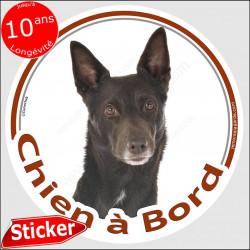 """Kelpie Australien, sticker autocollant rond """"Chien à Bord"""" 15 cm, adhésif photo chien voiture"""
