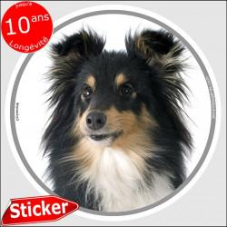 """Sticker autocollant rond """"photo"""" 15 cm, Berger Shetland tricolore Tête, intérieur/Extérieur, sheltie noir et feu adhésif"""