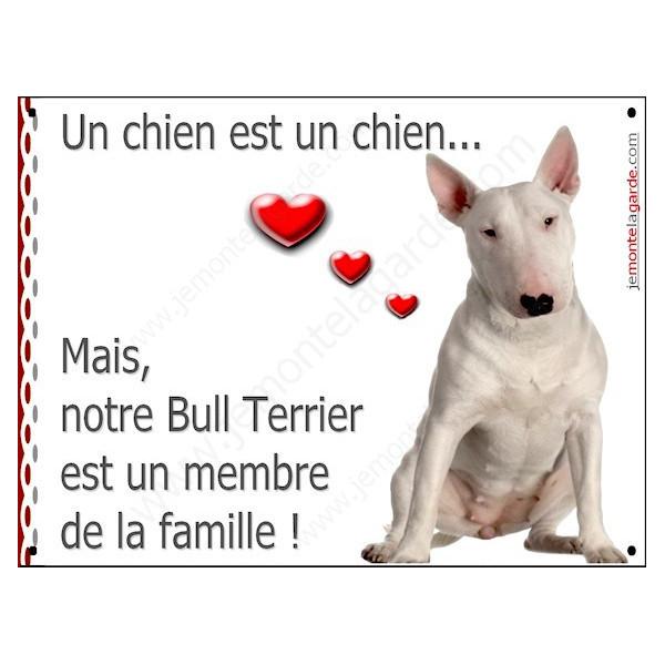 Bull Terrier Blanc Assis, Plaque Portail un chien est membre de la famille, pancarte, affiche panneau attention au chien