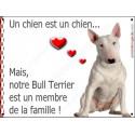 """Bull Terrier Blanc Assis, plaque """"Membre de la Famille"""" 2 Tailles LOV A"""