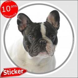 """Bouledogue Français Caille noir et blanc, sticker autocollant rond """"photo"""" 15 cm intérieur/Extérieur, adhésif race Bulldog"""