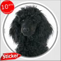 """Caniche noir, sticker autocollant rond """"photo"""" 15 cm intérieur/Extérieur"""