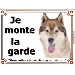 """Husky fauve doré tête, plaque """"Je Monte la Garde"""" 2 tailles LUX B"""