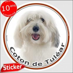 Sticker rond 15 cm, Coton de Tuléar Tête, intérieur/extérieur, autocollant adhésif chien photo