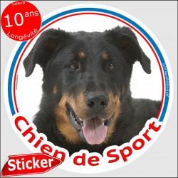 """Sticker rond """"Chien de Sport"""" 15 cm, Beauceron Tête, intérieur/Extérieur autocollant berger de beauce adhésif"""
