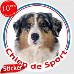 """Sticker rond """"Chien de Sport"""" 15 cm, Berger Australien Bleu Merle Tête, intérieur/Extérieur, autocollant adhésif sportif agility"""