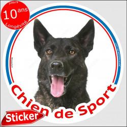 """Berger Hollandais bringé Tête, sticker rond """"Chien de Sport"""" intérieur/Extérieur, autocollant adhesif agility photo"""