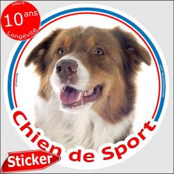 """Sticker rond """"Chien de Sport"""" 15 cm, Berger Australien Tricolore rouge, intérieur/Extérieur, autocollant agility aussie photo"""