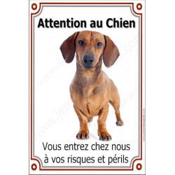 Plaque portail verticale 24 cm Attention au Chien, Teckel Poils Ras Fauve