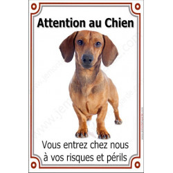 "Teckel Poils Ras Fauve, plaque ""Attention au Chien"" 24 cm  Vlux"