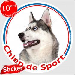 """Sticker rond """"Chien de Sport"""" 15 cm, Siberian Husky gris Tête, intérieur/Extérieur autocollant yeux bleus photo"""