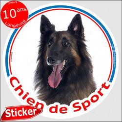 "Sticker rond ""Chien de Sport"" 15 cm, Berger Belge Tervueren Tête, intérieur/Extérieur adhésif Tervuren sportif photo"