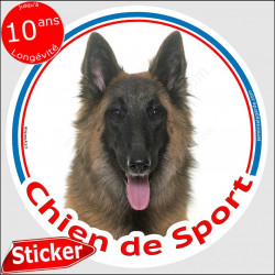 """Sticker rond """"Chien de Sport"""" 15 cm, Berger Belge Tervueren Tête, intérieur/Extérieur agility club tervuren adhésif photo"""
