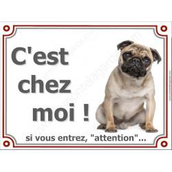 Carlin Assis, Plaque portail C'est chez moi, panneau affiche pancarte, attention chien