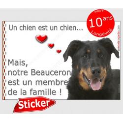 """Beauceron Tête, sticker autocollant """"Love"""" 16 x 11 cm, intérieur/Extérieur"""